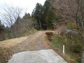 P1140092林道分岐.JPG