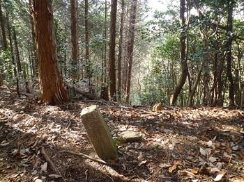 P1140150コン杭「祖生村有林」・西南側切り開き.JPG