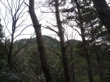 P1140199寺門山?(560mツインピーク).JPG