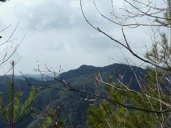 P1140458雑木尾根から石童山(逆方向).JPG