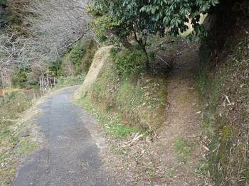 P1140535巡視路・山道取り付き(逆方向).JPG