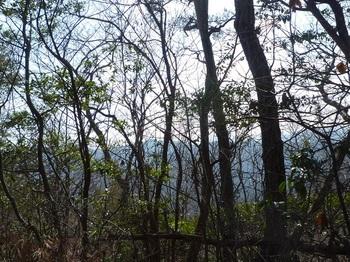 P1140592南東側樹間展望.JPG