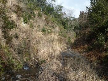 P1140680沢沿いの林道.JPG