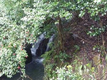 P1140761駐車地の小滝.JPG