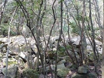 P1140989岩群.JPG
