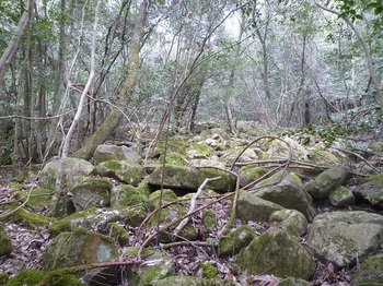 P1140995右の岩群を歩く.JPG