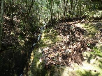 P1150014小滝を右に巻く.JPG