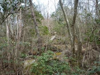 P1150054ヤブ気味の岩場(逆方向).JPG