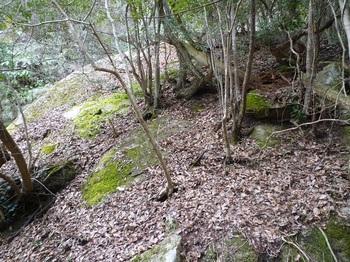 P1150155大岩.JPG