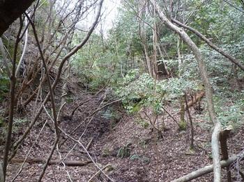 P1150158谷分岐・左の谷方向.JPG