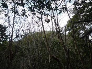 P1150182鷲ヶ岳山頂方向.JPG
