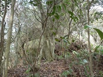 P1150306岩.JPG