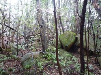 P1150374小岩の重なり(逆方向).JPG