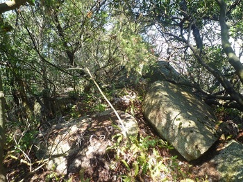 P1150425山頂の展望岩.JPG