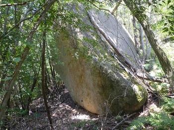 P1150630大岩.JPG