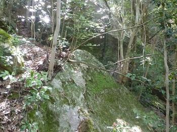 P1150867大岩.JPG