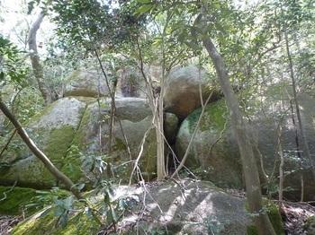 P1150874大岩.JPG