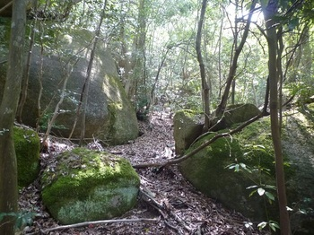 P1150875岩の狭間を進む.JPG