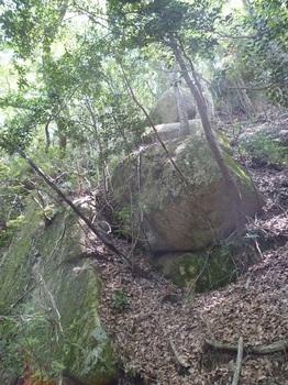 P1150877大岩.JPG