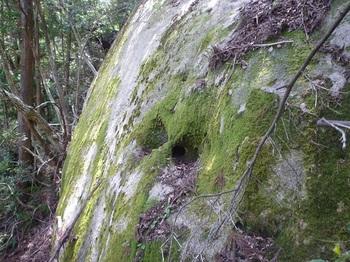 P1150930鼻ぐり岩?.JPG