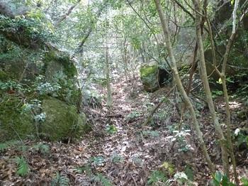 P1150945谷あいを登る.JPG