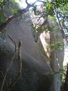 P1150946大岩(紋状の亀裂).JPG