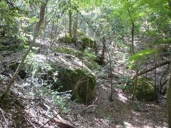 P1150955小岩が散在する谷(逆方向).JPG