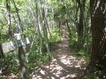 P1160251道標(山頂まで300m).JPG