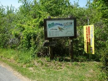 P1160276道標(愛鳥林コース分岐).JPG