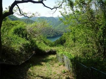 P1160278果樹園沿い.JPG
