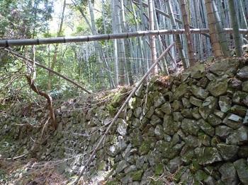 P1160355棚田跡の石垣(逆方向).JPG