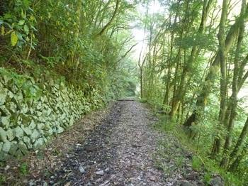 P1160438立派な石垣沿いの林道.JPG