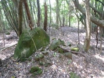 P1160670分岐の石.JPG