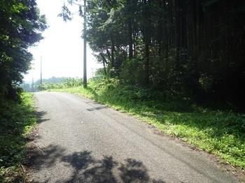 P1160724林道分岐(右).JPG