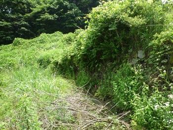 P1160764石垣沿いのあぜ道.JPG