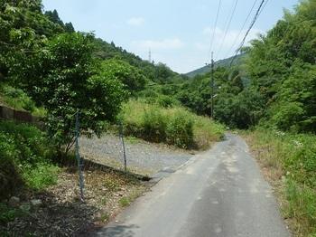 P1160767林道分岐(右へ).JPG