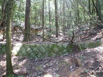 P1160789土留めの石垣.JPG