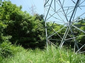 P1160816鉄塔.JPG