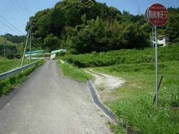 P1160823林道分岐(逆方向).JPG