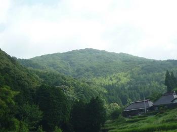 P1160845 桜山.JPG