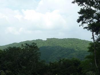P1160913 桜山から西尾根伐採地から岩こう山.JPG