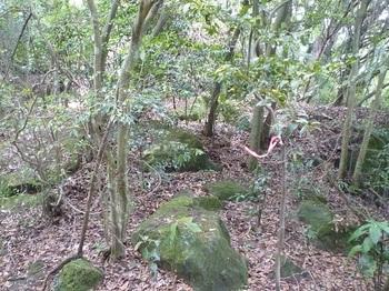 P1160924小岩が散在する尾根.JPG
