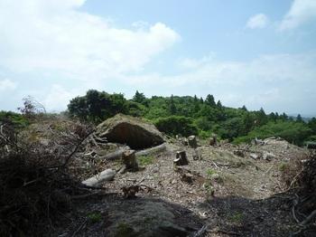 P1160933測量伐採地.JPG