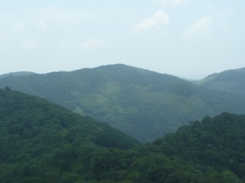P1160969金毘羅山.JPG