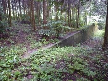 P1170035コンクリート壁・幅広道分岐.JPG