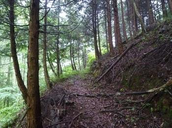 P1170059山道.JPG