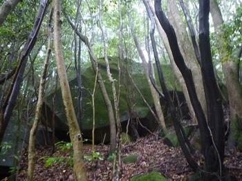 P1170094大岩.JPG