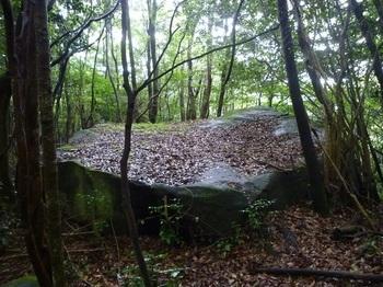 P1170097平岩(上方から).JPG