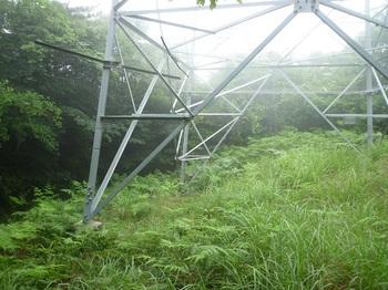 P1170126鉄塔.JPG