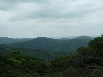 P1170235伐採地からあわぐろ山.JPG